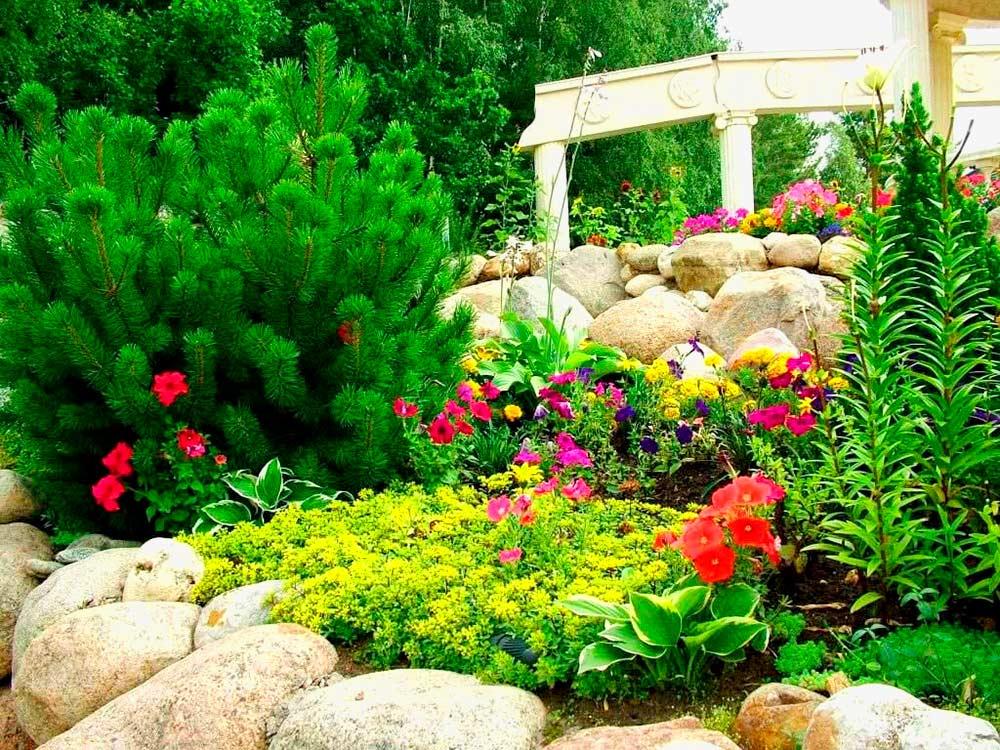 Альпийский-сад-на-собственном-участке