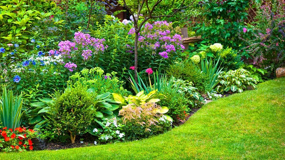 Озеленение и украшение ландшафта