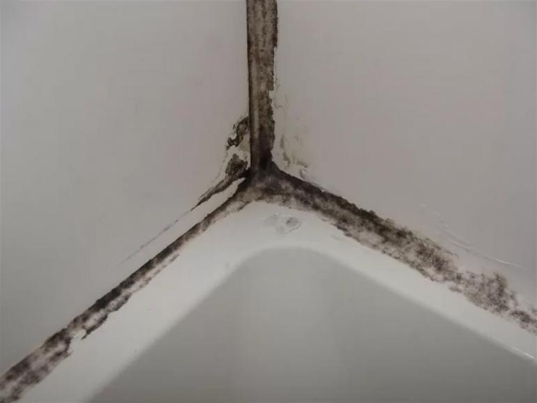Избавляемся от черной плесени в ванной комнате раз и навсегда